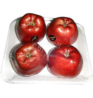 Manzana starking importacion en Bandeja de 4 unidades 1 kg