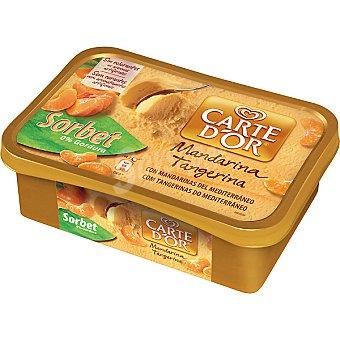 Carte D'Or Frigo Helado sorbete de mandarinas Tarrina 1 l