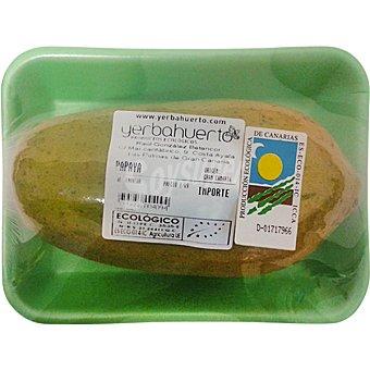 Yerbahuerto Papaya ecologica peso aproximado Bandeja 400 g