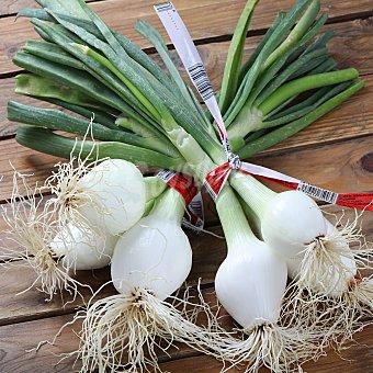Cebolleta blanca Manojo de 3 unidades