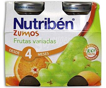 Nutribén Zumo de frutas variadas 260 Mililitros