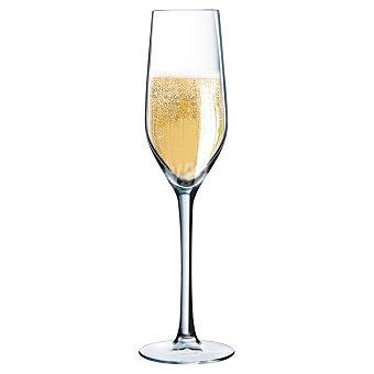 LUMINARC Sumiller Copa de Champagne Flauta 16 cl