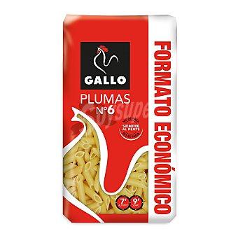 Gallo Plumas 6 - 1000 gr