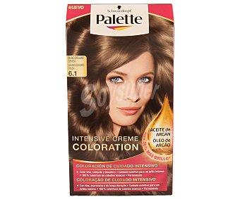 Palette Schwarzkopf Intense Color Cream rubio oscuro ceniza nº 6.1 coloracion de cuidado intensivo caja 1 unidad Caja 1 unidad