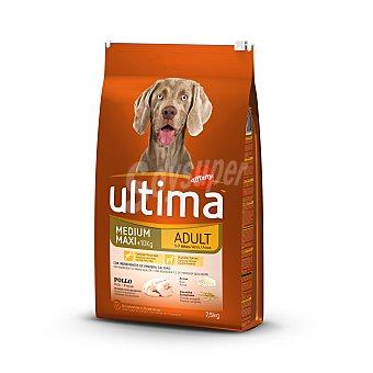 Ultima Affinity Pienso para perros adultos de raza mediana y grande de 1-7 años con pollo, arroz y cereales integrales Bolsa 7.5 kg