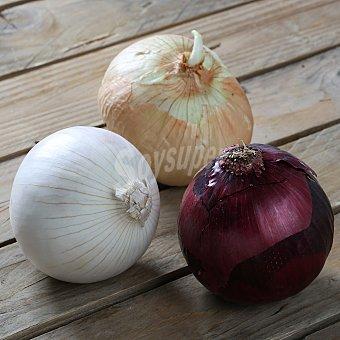 Carrefour Surtido de cebollas para ensalada Envase de 500 gr