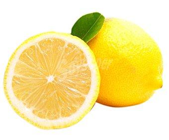 FRUTA Limón malla 750 gramos