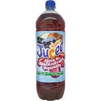 Princes Refresco de manzana-grosella Botella 2 litros