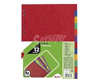 Auchan Lote de 12 separadores de cartón, multitaladro y de diferentes colores brillantes 1 unidad