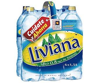 Fuente Liviana Agua mineral 6 botellas de 1,5 litros