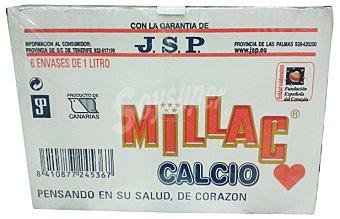 Millac Preparado lácteo Brick pack 8 x 1 l - 8 l