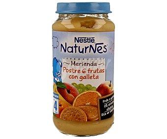 Naturnes Nestlé Tarrito de 6 frutas con galleta 250 gramos