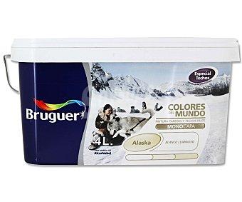 BRUGUER Pintura plástica monocapa, de color blanco luminoso y acabado mate, de la serie Colores del mundo 4 litros