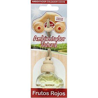 S&S Ambientador natural para pequeños espacios aroma frutos rojos Envase 1 unidad