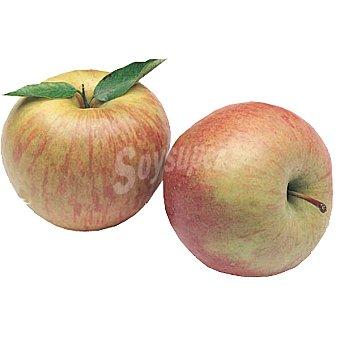 Manzana fuji extra al peso