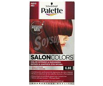 Palette Tinte Salón Colors 6.88 Rojo Intenso 1 ud