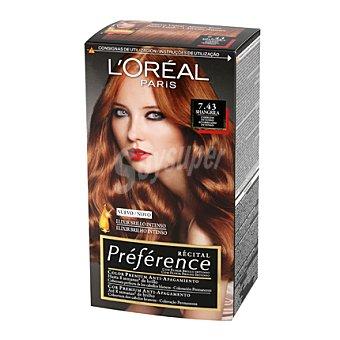 Preference L'Oréal Paris Tinte nº 7.43 Sangrila 1 ud