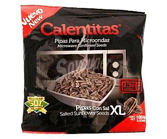 TOSTADEROS SOL DE ALBA Pipas XL con sal para microondas 100 g