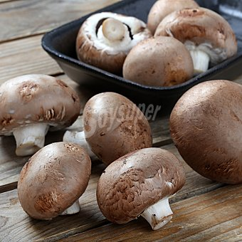 Hongo Portobello Bandeja de 250 g