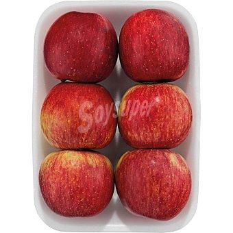 Manzana Fuji Bandeja 1,1 kg peso aproximado
