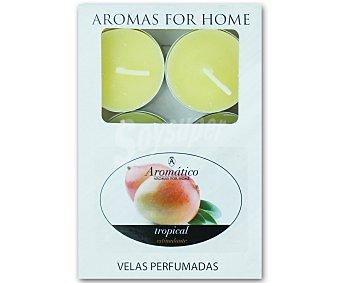 AROMÁTICO Velas calientaplatos o tealights perfumadas con olor a mango Pack de 6 Unidades