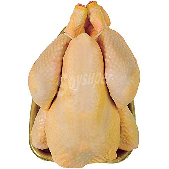 Pollo Amarillo Limpio Entero para Asar - Peso Aproximado Bandeja 1,5 kg