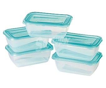 Pengo Lote de 5 recipientes herméticos de plástico Fresh & Freeze, 0,5 litros Pack de 5 Unidades