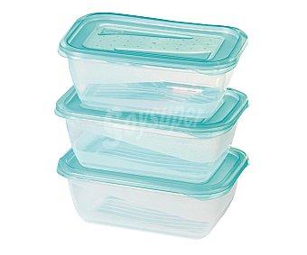PENGO Lote de 3 recipientes herméticos de plástico Fresh & Freeze, 1,25 litros Pack de 3 Unidades