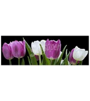 Lámina 30X90 tulipanes