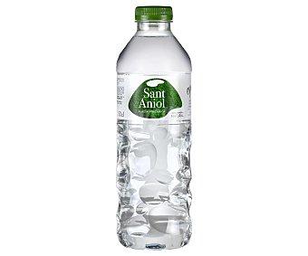 Sant Aniol Agua mineral Botella de 50 centilitros