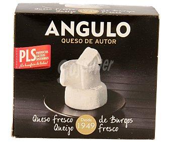 Angulo Queso fresco mezcla tradicional Pack 2x150 g