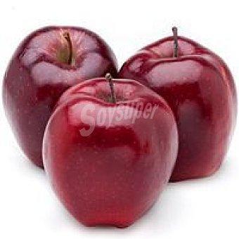 Manzana Roja del País Vasco 1 kg