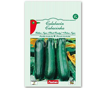 Auchan Semillas para sembrar Calabacín de la variedad belleza negra 6 gramos