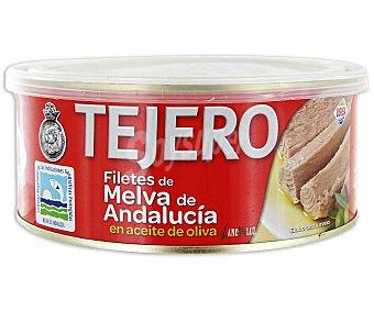 Tejero Filete de Melva en Aceite de Oliva 618 Gramos