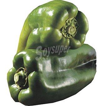 Pimiento verde gordo extra al peso