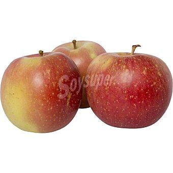 Manzanas fuji Girona al peso 1 kg