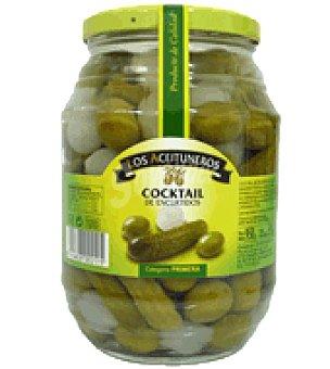 Los Aceituneros Pepinillos Frasco 500 g