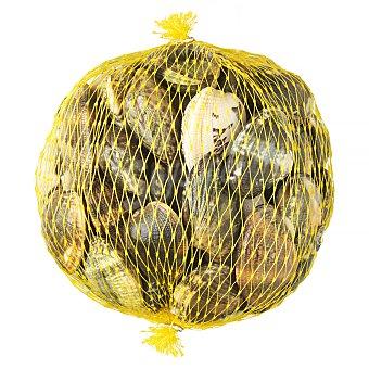 Almeja japonesa fresca *verano*, varios Malla 500 g