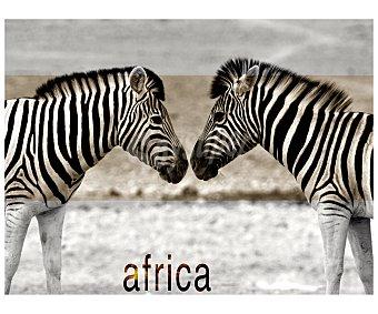 IMAGINE Cuadro con la imagen de 2 zebras una enfrente de la otra y con la palabra Africa escita debajo de ellas y dimensiones de 60x80 centímetros 1 unidad