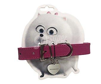Mascotas Collar con chapa identificativa Gidget Talla m 2