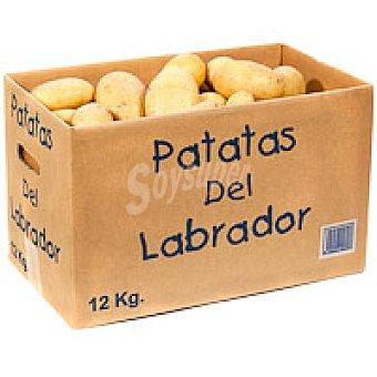 El Labrador Patata Caja 12 kg