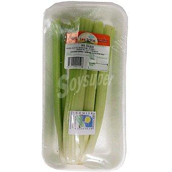 SATAS Apio verde ecológico  Bandeja 400 g peso aproximado