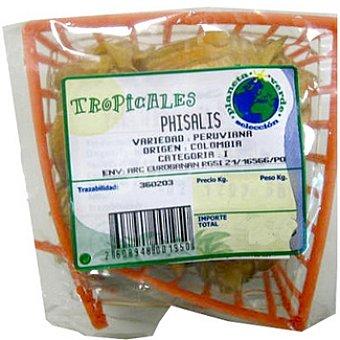 Phisalis Tarrina 100 g