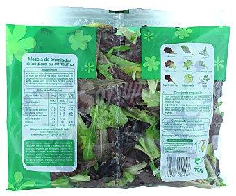 Auchan Mezcla de ensaladas(hojas rojas y hojas verde listas para su consumo 70 gramos
