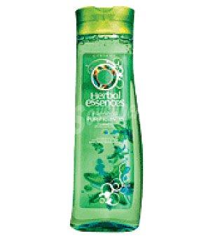 Herbal Essences Champú frescor purificante 500 ml