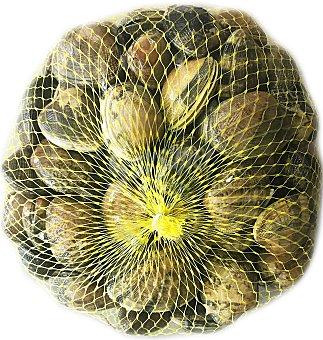 Almeja fresca en Malla de 1 kg