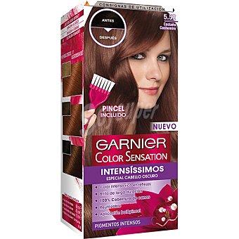 Color Sensation Garnier Intensissimos tinte castaño cashemire nº 5.52 especial cabello oscuro caja 1 unidad incluye pincel Caja 1 unidad