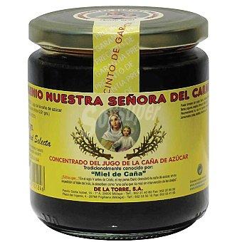 DE LA TORRE Miel de caña Frasco 460 g