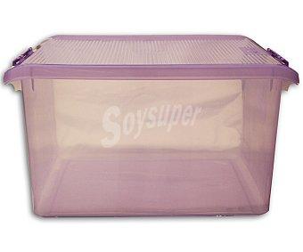 Tatay Caja multiusos con tapa color morado translúcido, 35 litros 1 Unidad