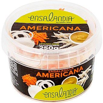 Ensalandia Ensalada americana Envase 250 g